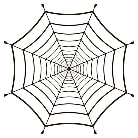 cobweb, spiderweb  gossamer