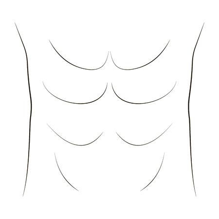 belly press bodybuilder, vector drawing of abdominal and groin muscles, inflated press Çizim