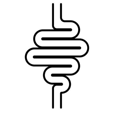 icon digestive tract, the intestines, the vector sign of gastrointestinal health, stomach bowel
