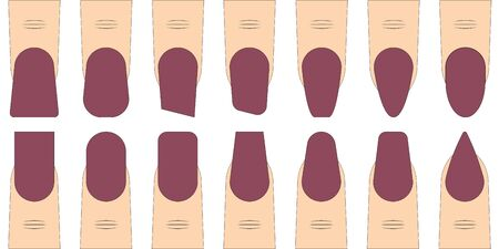 set nail shape vector fashion trends in manicure, fingers with different nail shape sample for manicure salon Illustration