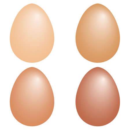 set 3d realistic eggs shape, vector chicken eggs with realistic color, easter symbol