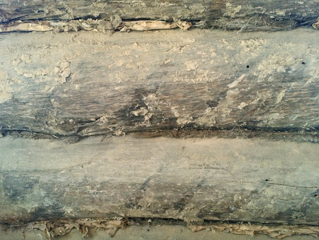 Grunge wood wall texture surface of house for design