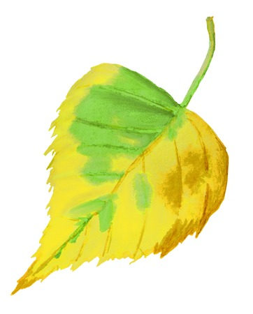 Watercolor hand drawn illustration of autumn yellow leaf Imagens - 124887962