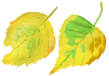Watercolor hand drawn set of two icons of autumn yellow leaf Imagens - 124887966