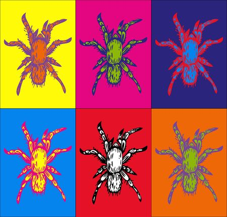 Vector hand drawn ink illustration of few multicolored spiders on background in different colors. Pop art style. Imagens - 124887754