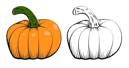 Two vector ink hand drawn icons of pumpkin Stok Fotoğraf