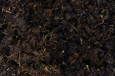 Brown texture of the manure for fertilizing