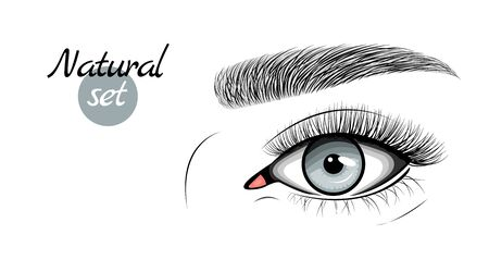 Vector illustration of gray female eye with extended eyelashes and eyebrow. Natural set.