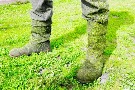 Gray boots smeared in green fresh cut grass from the trimmer on the worker's feet. Selective focus. Banque d'images