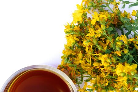 Cup of tea with yellow tutsan flowers isolated on white background with copy space. Image with shallow depth of field. Card or banner for your design.