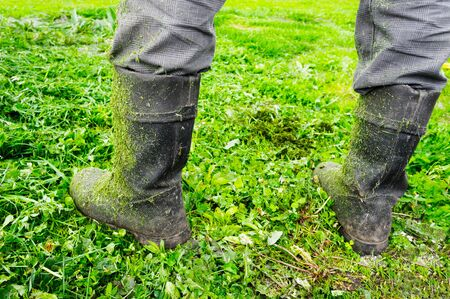 Gray muddy boots in the fresh cut grass from the lawn mower on the feet of the worker
