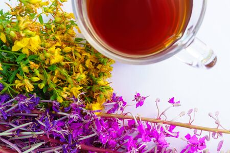 Cup of tea with yellow tutsan, purple fireweed flowers on white background