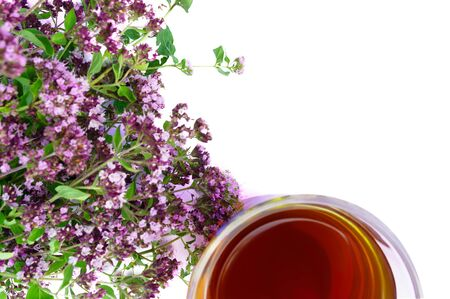 Tea in glass with a bouquet of oregano in selective focus isolated on white background with copy space