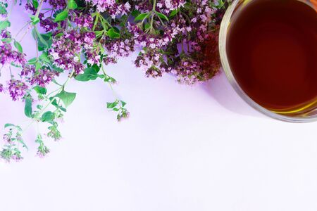 Tea in cup with bouquet of oregano in selective focus on white background with copy space