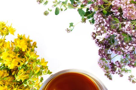 Tea in cup with bunchs of marjoram and hypericum isolated on white background