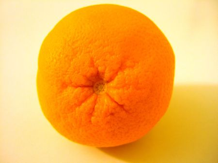 progeny: orange