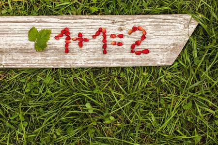 signos matematicos: Tarea matem�tica simple. Los n�meros y signos matem�ticos de fresas Foto de archivo