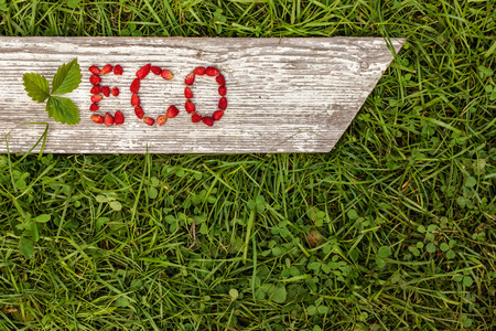 green eco: Green grass and gray board. Letter ECO made from fresh berries