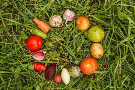 comidas saludables: Healthy foods. autumn harvest. raw food for vegetarians