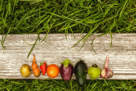 green garden: vegetables laid out in a row with an empty space for text on a gray background of wooden planks