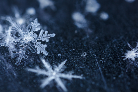 snowflake snow: Melting snowflakes in a beam of light