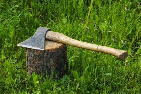 logger: Axe on the stump. Work logger tool. Firewood for the winter