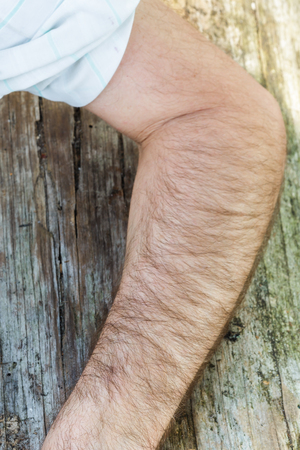 hairy arms: Body Part: Hand of white hairy men Stock Photo