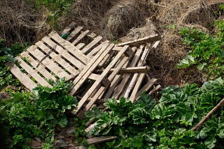 Broken wooden pallets in the dump Stock Photo