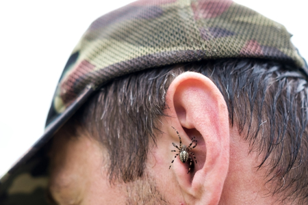Spider sits on man face.