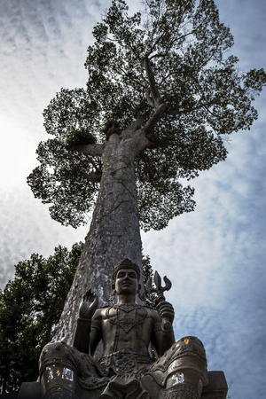 An ancient statue of Buddhism. A man is sitting under a huge tree. Stock fotó
