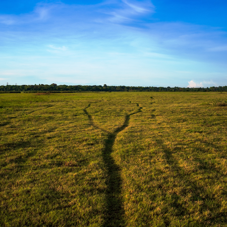 Two paths unite in one on green field. Concept of making choice.