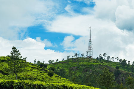 View on green tea plantation and communication tower in Haputale. Main agricultural industry in Sri Lanka