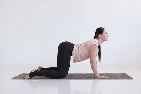 Woman doing yoga asana bitilasana cow or cat pose for gentle warm up for spine Stockfoto