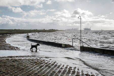 wave on the flooded embankment near sea in Wremen Stok Fotoğraf