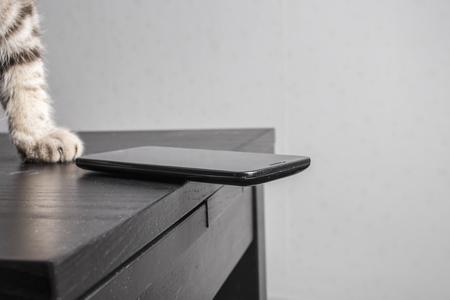 kotów: Kot ma zamiar wyrzucić telefon komórkowy na podłodze niebezpiecznie spoczywającej na krawędzi stołu, niedbale w lewo