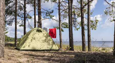 summer landscape: Panoramic view of tent stands in a pine forest on the sea shore near the sandy beach, while camping. The trees hanging clothes and solar panels. Stock Photo