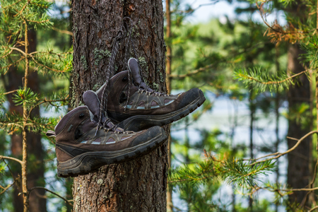 hiking boots hanging on a nail hammered into a tree in the forest