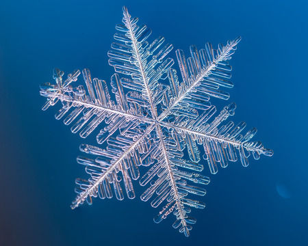 a real snowflake macro lies on a blue background, as if flying in sky Stock Photo