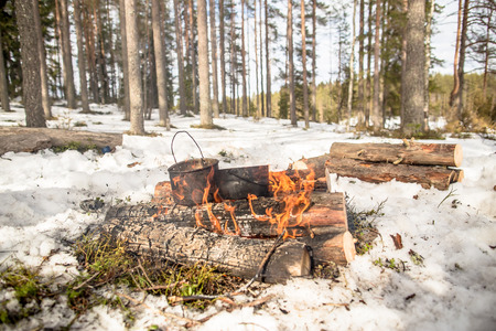 Cooking in a winter hike in the cauldron hanging over the fire in the snow-covered pine forest while camping on a sunny day, from the boiler coming vapor
