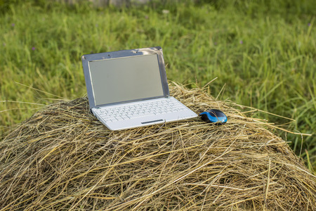 laptop lies on a haystack in a meadow in the village of evening at sundown Reklamní fotografie