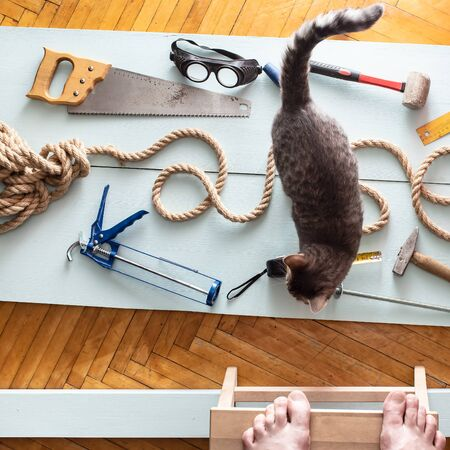 Man was tired of work, put the tool on the boards, inscribed with a rope and photographed while standing on a bench. Cat passes by, which makes the situation even more ridiculous. Top view