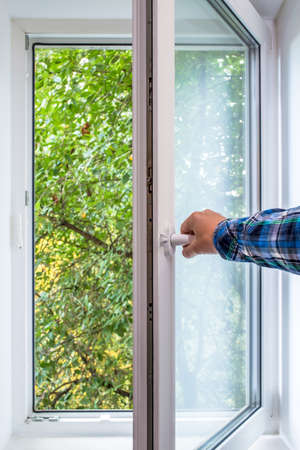 Man hand opens a PVC window from which you can see a tree in an ecologically clean area of the city, with fresh air.
