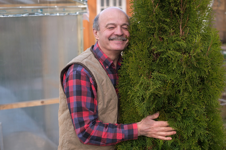 Mature man being proud of his garden. He embraces a tree trunk of green thuja.