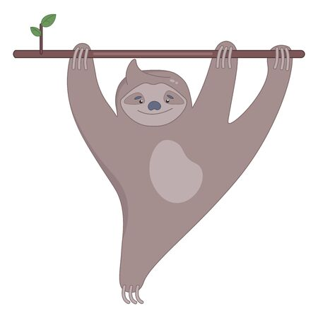 Cute sloth on the branch of tree smiling.