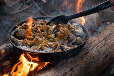 Mushrooms chanterelles on pan. Cook on campfire