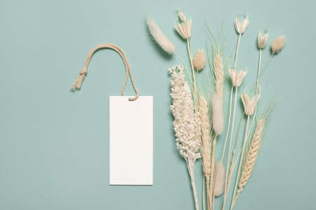 Various yellow dried wildflowers with copyspace label on blue background.
