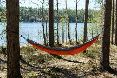 guy ties hammock forest between trees holiday sunny day 스톡 콘텐츠