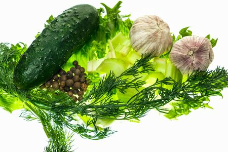 fresh cucumber celery green salad pepper vegetarian food isolated on white 스톡 콘텐츠