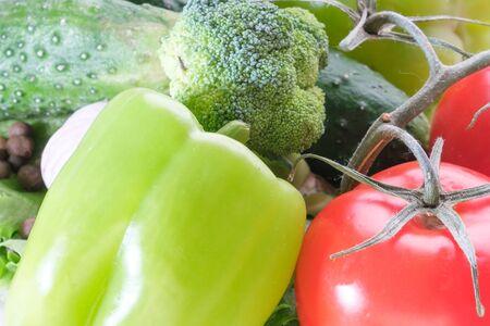 fresh eggplant squash zucchini garlic cucumber paprika tomato izolated on white background 스톡 콘텐츠