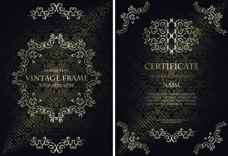 Vector set of elegant vintage background with a frame and certificate. Stylish design              Vector